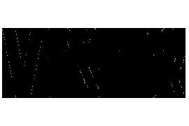 Logo Vostock